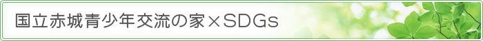 国立赤城青少年交流の家×SDGs - 国立赤城青少年交流の家
